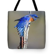 Spread The Wings Tote Bag