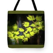 Spring Color Tote Bag