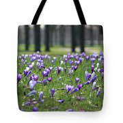 Spring Flowering Crocuses Tote Bag
