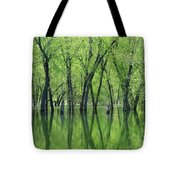 Spring Green Reflections  Tote Bag by Lori Frisch