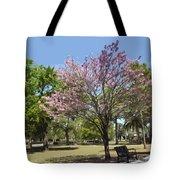 Spring Magnolia In Winter Park  Tote Bag