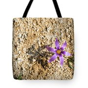 Spring Sand Crocus Flower Tote Bag