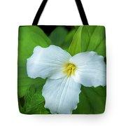 Spring Trillium Tote Bag