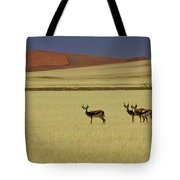 Springbok At Sossusvlei Tote Bag