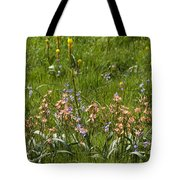 Springtime In South Africa Tote Bag
