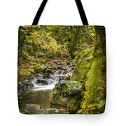 Starvation Creek Tote Bag