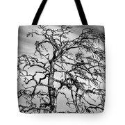 Still Standing - Black Edition Tote Bag