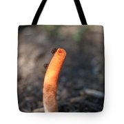 Stinkhorn And Flies Tote Bag