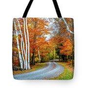 Stone Autumn Road Tote Bag