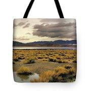 Storm In The Desert Tote Bag