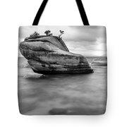 Stormy Bonsai Rock Tote Bag