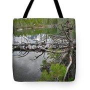 String Lake Reflection Tote Bag