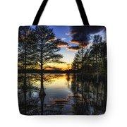 Stumpy Sunset Tote Bag