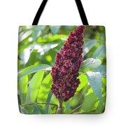 Sumac Fruit Tote Bag