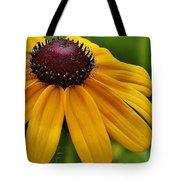 Summer Delight Tote Bag