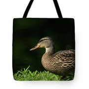 Summer Nature Tote Bag