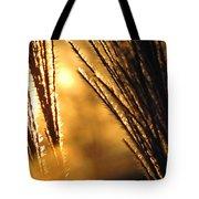 Sun Grass Wind Tote Bag