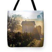 Sun Rays In Morning Fog Vineyard View Tote Bag