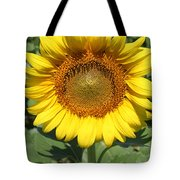 Sunflower 09 Tote Bag