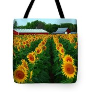 Sunflower Field #4 Tote Bag