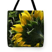 Sunflower Series 09 Tote Bag