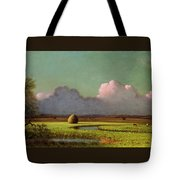 Sunlight And Shadow Tote Bag