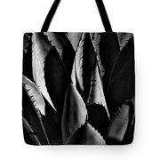 Sunlit Cactus Tote Bag