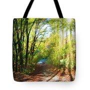 Sunny Autumn Path Tote Bag