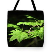 Sunny Summer Maple Tote Bag