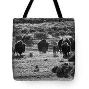 Sunset Bison Stroll Black And White Tote Bag