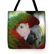Surprised By Joy Tote Bag
