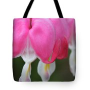 Susie And Her Sisters Tote Bag