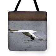 Swan During Take Off Tote Bag