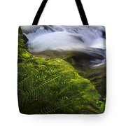 Sweet Creek Oregon 11 Tote Bag