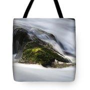Sweet Creek Oregon 13 Tote Bag