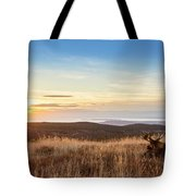 Taking In The Sunset Tote Bag