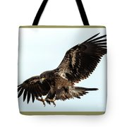 Talons First Tote Bag