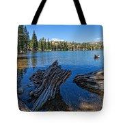 Tamarack Lake Tote Bag