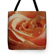 Tangy Tote Bag by Tracy Hall