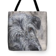 Tender Moments Tote Bag