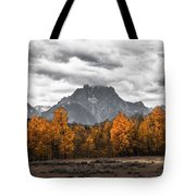 Teton Fall - Modern View Of Mt Moran In Grand Tetons Tote Bag