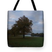 That Tree, 26th October, 2015 Tote Bag