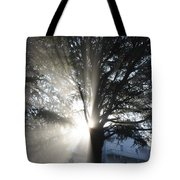 The Abode Of Gladness Tote Bag