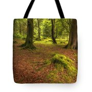 The Ardgartan Forest Tote Bag