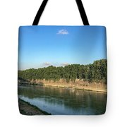 The Blond Tote Bag