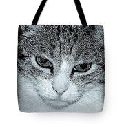 The Cat's Innocense Tote Bag