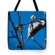 The Chickadee Tote Bag