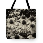 The Cones Tote Bag