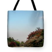 The Creek At The Yoro Waterfall In Gifu, Japan, November, 2016 Tote Bag