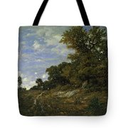 The Edge Of The Woods At Monts-girard, Fontainebleau Forest Tote Bag